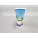 Paradiso 24 oz Paper Cup