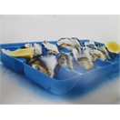 OYSTER TRAYS COLOUR BLUE